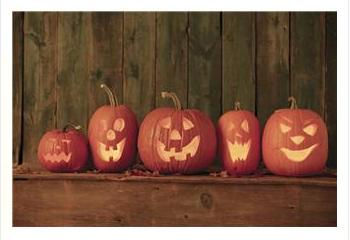 row of carved pumpkins