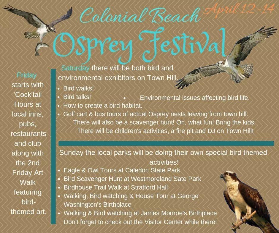 Osprey Festival flyer