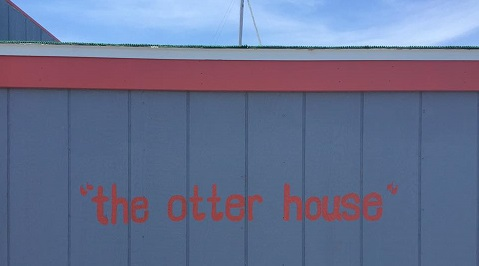 otter house lettering