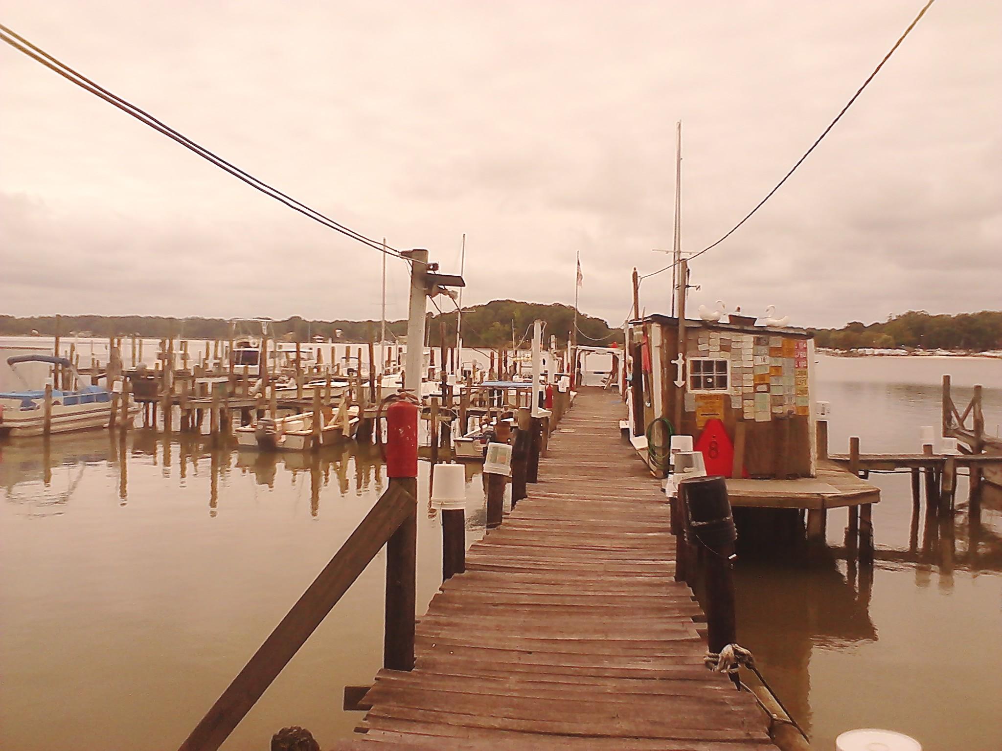 Parker's Marina