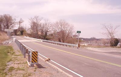 Completed Bridge (w/roadkill)