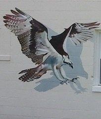 Osprey Mural