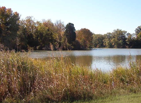View of the creek at Potomac Crossing, Colonial Beach
