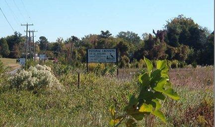 Potomac Crossing Subdivision sign